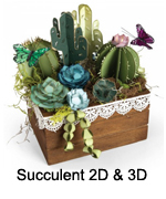 661933_Succulents_2D_3D