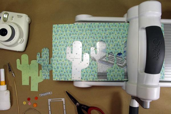 Cut_flipped_cacti