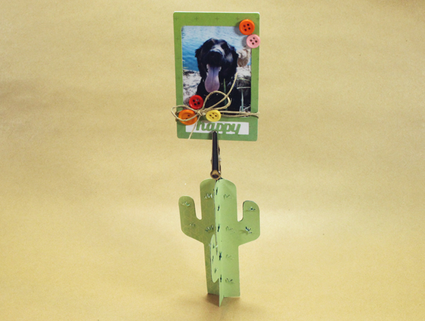Succulent_photo_stand