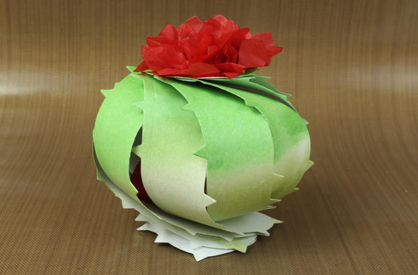 Barrel_cactus_treat_box