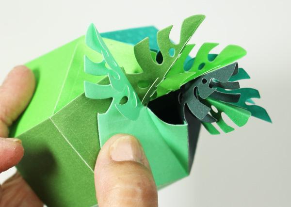 Leaf_fold0