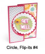 660022_Circle_Flipits_4