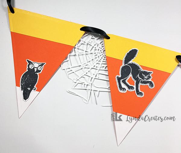 1_owl_cat