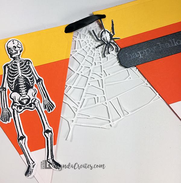 2_Spider_skeleton